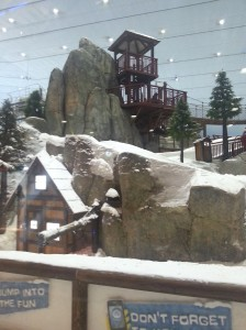 I was amazed to see Ski Dubai firsthand—a snowy indoor ski lift and slope within the Mall of the Emirates—one of the world's largest shopping malls.